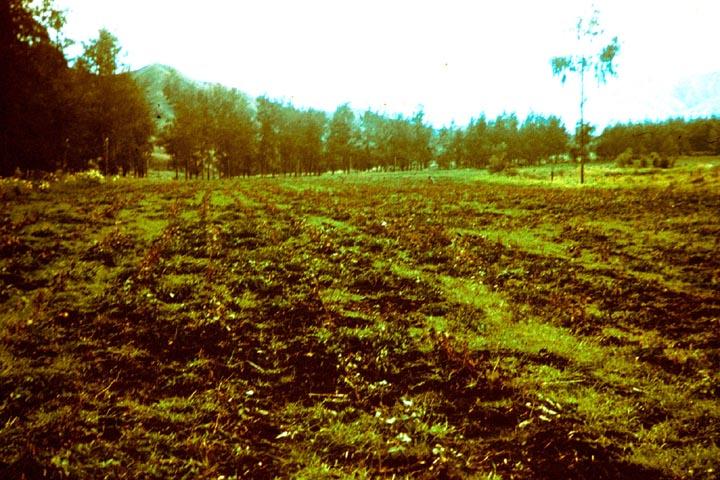 006c-png-manure-compost5