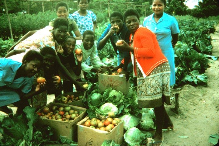 029c-zimbabwe-africa