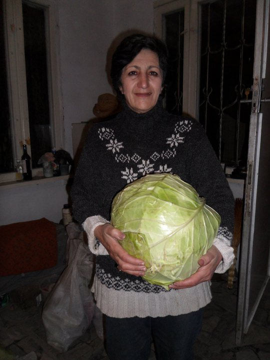armenia-2010-20-cabbage