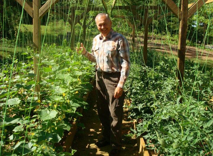 jims-tomatoes-cucs-may-18
