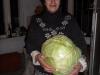 armenia-2010-20-cabbage