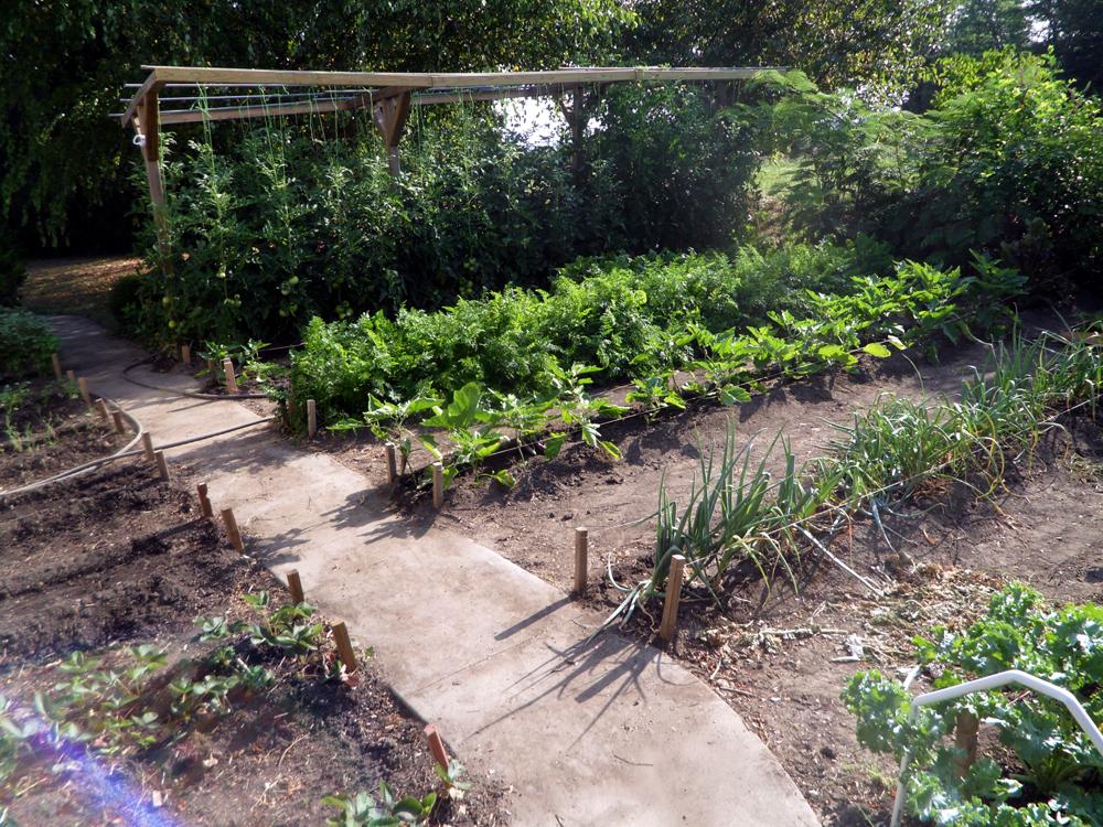 2-jims-soil-garden