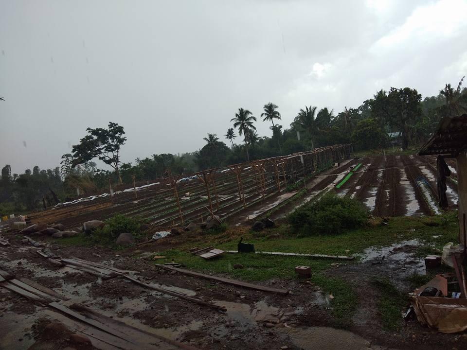 Rainy Day on Leyte 3 10 18