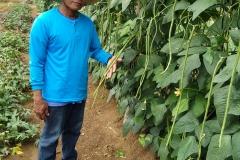 Conrad & Philippine String Beans - Philippines