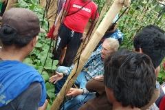 Jim demonstrating pruning okra