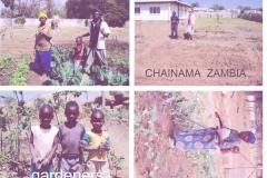Chainama Zambia Gardens