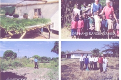 4 gardens in Zambia including Orphanage