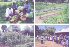 Enterprise & Prophet's gardens