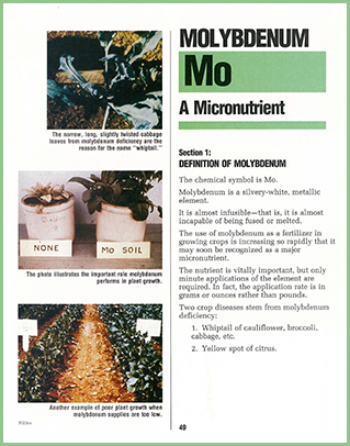 Garden Doctor - Molybdenum Chapter